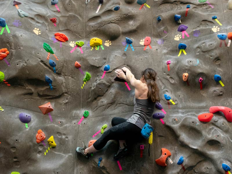 a female student hanging on the indoor climbing wall as she chooses her route up the wall